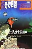 油鸟黑暗中的回音(DVD)