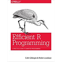 Efficient R Programming: A Practical Guide to Smarter Programming (English Edition)