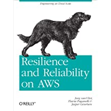 Resilience and Reliability on AWS: Engineering at Cloud Scale (English Edition)