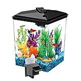 Koller Products AquaScene 1 加仑鱼缸带 LED 照明和自然生物过滤
