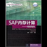 SAP内存计算——HANA (SAP企业信息化与最佳实践丛书)