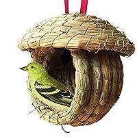 Hamiledyi 户外鸟屋,手工编织悬挂鸟笼,鸟笼,稻草鸟巢,天然鸟巢,鸟巢,理想躲藏鸟巢