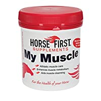 Horse First My Muscle