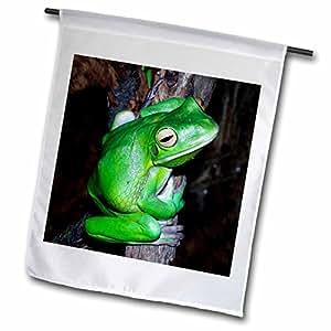 青蛙–Tree–旗帜 12 x 18 inch Garden Flag