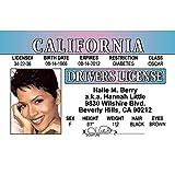 Signs 4 Fun NHBID2 Halle Berry's Driver's 许可证