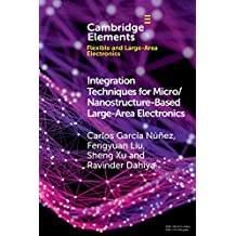 Integration Techniques for Micro/Nanostructure-Based Large-Area Electronics (Elements in Flexible and Large-Area Electronics) (English Edition)