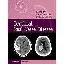 Cerebral Small Vessel Disease (English Edition)
