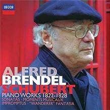 进口CD:布兰德尔:舒伯特钢琴独奏作品集(7CD) 4782622