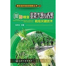 图说棚室韭菜大葱及香葱栽培关键技术