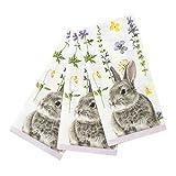 会说话的桌 TSBUNNY-SINGNAPV2 真正兔子单片餐巾 20 多色