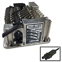 Lester Summit 系列 II 电池充电器 650W 36/48V 带雅马哈 2 针插头 8.5英尺直流电源线