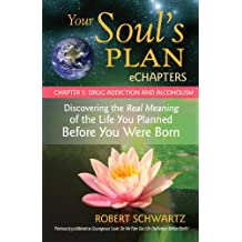 Your Soul's Plan eChapters - Chapter 5: Drug Addiction and Alcoholism: Discovering the Real Meaning of the Life You Planned Before You Were Born (English Edition)