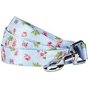 "Blueberry Pet 耐用春香型花卉狗绳,配套项圈和背带可单独购买 淡蓝色 5' * 3/4"""