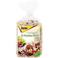 Jason捷森五种水果麦片500g(德国进口)