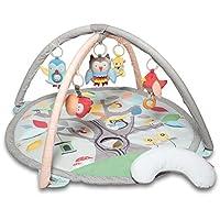 美国Skip Hop Treetop Friends 友好森林活动地垫 - 灰色 / 粉彩色SH307275