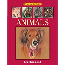 Drawing in Color - Animals (English Edition)