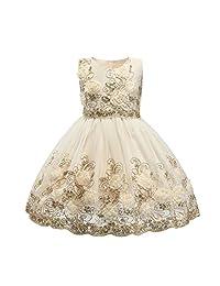 Ruffles 蕾丝蝴蝶结花朵薄纱公主正式婚礼生日派对礼服适合幼儿女孩
