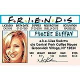 Signs 4 Fun Njaidp Phoebe's Driver's 许可证