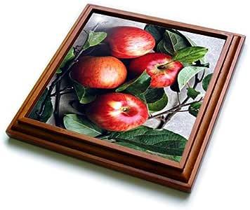水果食物 - 苹果-三叶草 棕色 8 到 8 英寸 trv_765_1