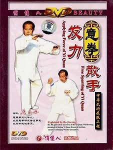 意拳:发力 散手(DVD)