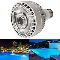 Bonbo 60W LED 游泳池灯泡,6000K 日光白光,OSRAM 120V 不可调光 LED 游泳池灯泡,E26 底座适用于大多数 Pentair Hayward 灯具