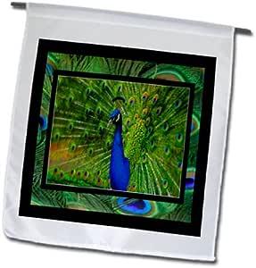 3dRose fl_13424_1 Preening Peacock Garden 旗帜,30.48 x 45.72 厘米