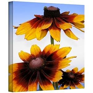 ArtWall 'Sunny Bouquet' 画廊装裱油画艺术作者 Herb Dickinson 24 到 24 英寸 0dic093a2424w