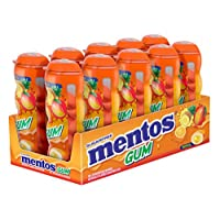 mentos GUM 袋奶瓶,4盎司(10件装)