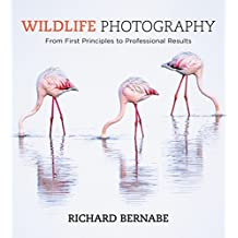 Wildlife Photography (English Edition)