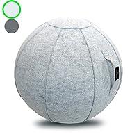 带手柄的坐球椅,适用于家庭、办公室、普拉提、瑜伽、稳定和健身 - 包括带泵的运动球