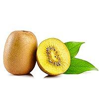 蒲江黄心猕猴桃10斤(毛重) 奇异果金果 新鲜水果