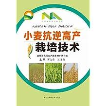 小麦抗逆高产栽培技术 (农业新品种新技术新模式丛书)