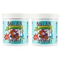 Bad Air Sponge 空气净化剂去除甲醛 新房装修汽车除异味除臭剂 (两瓶)