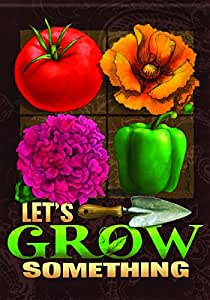 """Carson Let's Grow Something Flag House - 28""""x40"""""""