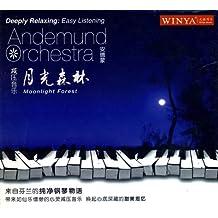 减压音乐月光森林(CD)