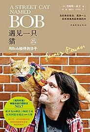 遇见一只猫:与Bob相伴的日子(流浪猫鲍勃完成了治愈人类的使命,光荣的回喵星了,这些温暖人心的瞬间变成了永恒。)