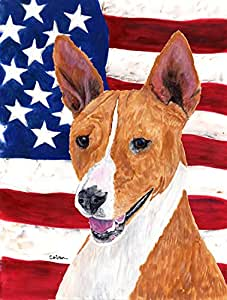 Caroline's Treasures SC9033GF USA American Flag with Basenji Flag, Small, Multicolor