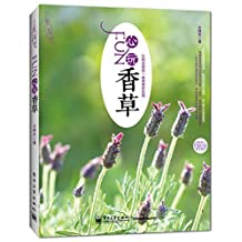 园艺·梦想·家:FUN心玩香草