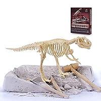 儿童恐龙化石玩具模型 考古挖掘 拼装玩具 恐龙化石 霸王龙考古 DIY手工拼装 (霸王龙)