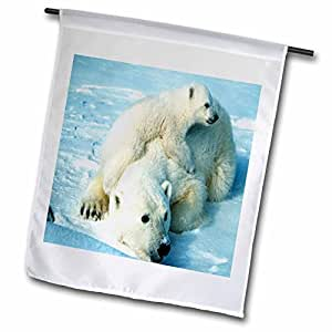 florene animals – playful polar Bear N 她 mom. jpg – 旗帜 12 x 18 inch Garden Flag