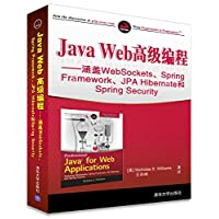 Java Web高级编程:涵盖WebSockets、Spring Framework、JPA Hibernate和Spring Security