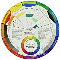 Color Wheel 9-1/4 多色 大