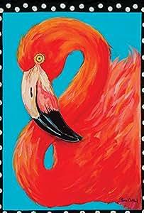 Toland Home Garden 镶框火烈鸟 71.12 x 101.6 cm 装饰彩色热带粉鸟肖像房旗