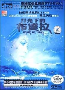 月光下的布达拉(CD)
