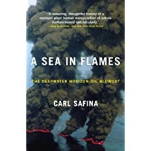 A Sea in Flames: The Deepwater Horizon Oil Blowout (English Edition)