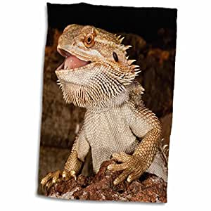 "3D Rose Bearded Dragon Lizard-Native to Australia-Na02 Dno0680-David Northcott Hand/Sports Towel, 15 x 22"""