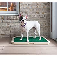 PetSafe Piddle Place 室内宠物外观,卫生
