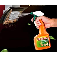 厨房清洁剂 重油污净抽油烟机清洗剂 去油污油烟强力除油剂 (2瓶)