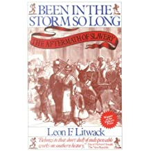 Been in the Storm So Long: The Aftermath of Slavery (English Edition)