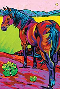 托兰家庭花园流行艺术马 71.12 x 101.60 cm 装饰彩色西南沙漠农场旗帜